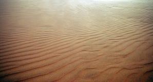 pustynna skóra Zdjęcia Royalty Free