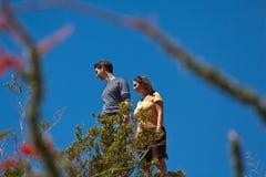 pustynna wycieczkowiczy spojrzenia dolina Obrazy Royalty Free