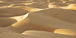 pustynne diuny Zdjęcie Stock