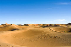 pustynne diuny Sahara Zdjęcie Stock