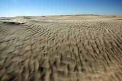 Pustynne diuny w Sahara Obrazy Royalty Free