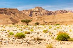 Pustynne halne grani falezy kształtują teren widok, Izrael natura Obraz Royalty Free