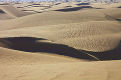 pustynne linie Obrazy Royalty Free