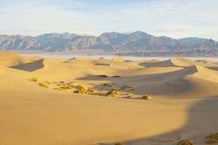 Pustynne piasek diuny Obrazy Stock
