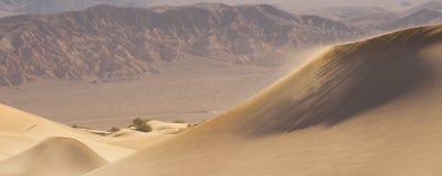 Pustynne piasek diuny Obraz Stock