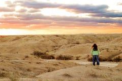 pustynne słońca Zdjęcia Royalty Free