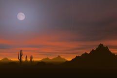 pustynne słońca Fotografia Royalty Free