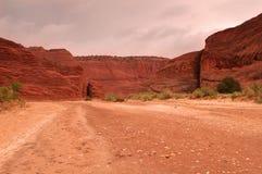 pustynni landscpae Zdjęcie Royalty Free
