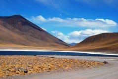 pustynny błękit jezioro Obraz Stock