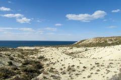 Pustynny biały piaska seashore obraz royalty free