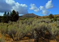 Pustynny Butte Fotografia Stock