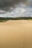 pustynny daleko wydm olbrzym jak wygląda nowy północnej Zelandii Północny Nowa Zelandia Obrazy Stock