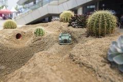 Pustynny drogi i samochodu model Zdjęcia Royalty Free