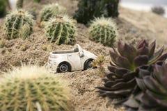 Pustynny drogi i samochodu model Zdjęcie Royalty Free