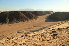 pustynny egipcjanin Obrazy Stock