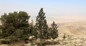 Pustynny góra krajobraz, Jordania, Środkowy Wschód (widok z lotu ptaka) Fotografia Stock