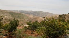 Pustynny góra krajobraz, Jordania, Środkowy Wschód (widok z lotu ptaka) Obrazy Royalty Free