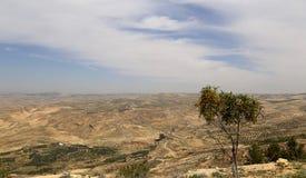 Pustynny góra krajobraz, Jordania, Środkowy Wschód (widok z lotu ptaka) Obraz Stock