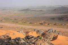 pustynny krajobraz Obraz Stock
