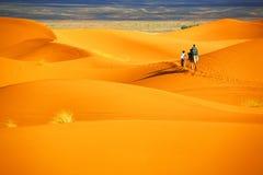 pustynny krajobraz Obraz Royalty Free