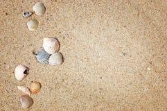 Pustynny krajobraz w Giza, Egipt, tło, seashells Zdjęcie Royalty Free
