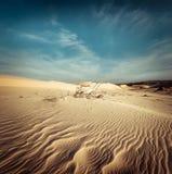 Pustynny krajobraz z nieboszczyk roślinami w piasek diunach globalne ocieplenie Zdjęcie Royalty Free