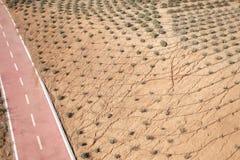 Pustynny krajobraz z rowerowym pasem ruchu fotografia stock