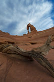 Pustynny Krajobrazowy Delikatny łuk Zdjęcia Royalty Free