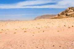pustynny krajobrazowy rumowy wadi Zdjęcia Stock