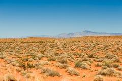pustynny krajobrazowy sceniczny Obrazy Stock