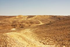 pustynny ślad Fotografia Royalty Free