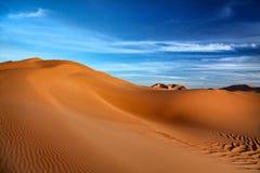 pustynny libijczyk Zdjęcia Stock