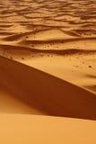 pustynny Morocco Sahara zdjęcia royalty free