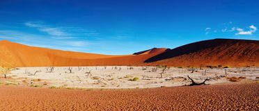 pustynny namib Namibia sossusvlei Fotografia Stock