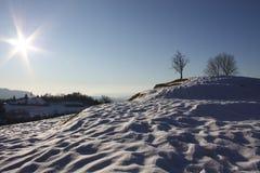 pustynny śnieg Obraz Royalty Free