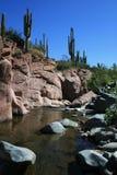pustynny odświeżenie creek Obrazy Stock