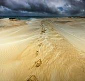 pustynny odprowadzenie Fotografia Royalty Free