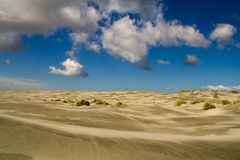 pustynny piach fotografia stock
