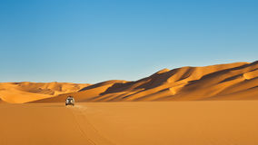 pustynny safari Sahara Zdjęcia Royalty Free