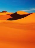 pustynny Sahara Obraz Royalty Free