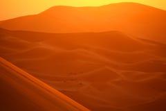 pustynny Sahara Zdjęcia Royalty Free
