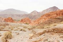 Pustynny sceniczny Zdjęcia Stock