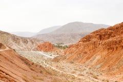Pustynny sceniczny Fotografia Stock