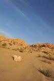 pustynny skalisty Zdjęcia Royalty Free