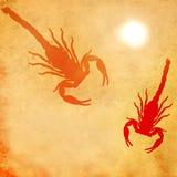 Pustynny skorpionu abstrakt obraz stock