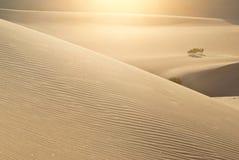 pustynny target1102_1_ diun Obraz Royalty Free