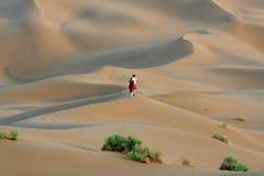 pustynny target1375_0_ fotografia stock