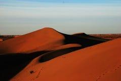 pustynny utrzymanie Zdjęcia Royalty Free