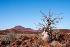 Pustynny widok przy Twyfelfontein w Damaraland Namibia obraz stock