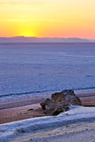pustynny wschód słońca Obrazy Stock
